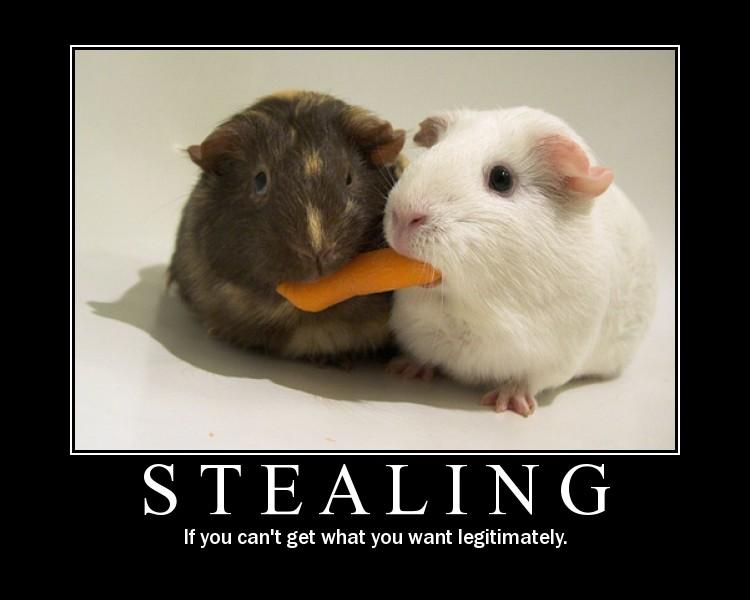 stealing-hamsters